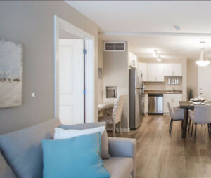 3 bed 2 bath, 1/2 month free Move in Aug 15