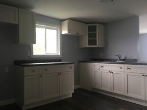 Immaculate, Fully-Renovated 2-bedroom Apartment on nice Block
