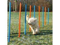 Trixie Dog Agility Weave Poles X 12