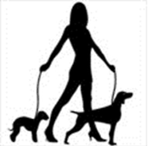 Offering dog walking and pet waste removal services