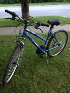 Sporteck Bike For Sale