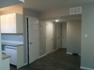 Gorgeous one bedroom basement suite available in the South