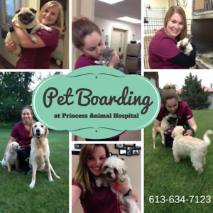Pet Boarding - Ask us about the many BENEFITS!  :)
