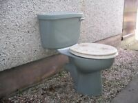 Sage green toilet