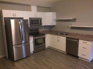 Spacious and new 2 bedroom suite available immediately