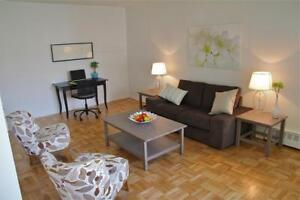 Near DVP and HWY 401 – Large 1 Bedroom Apartment - MUST SEE!