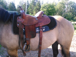 Barrel saddle and lots of other tack