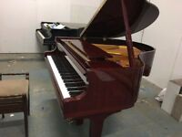 BRAND NEW - STEINHOVEN HIGH GLOSS WALNUT BABY GRAND PIANO!