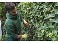 Experienced Gardeners - Garden Clearance, Maintenance, Lawn Care and Jet Wash in Manchester