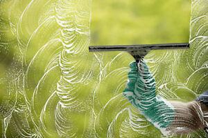 Professional Window/Gutter Cleaning Services