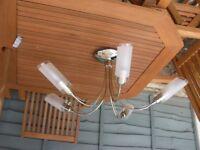 5 Arm Chrome Ceiling Light