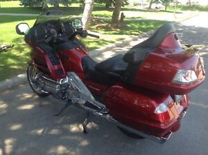 Gold Wing for sale