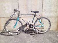 Carrera Bike Cheap Perfect for Students!