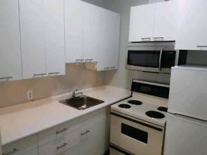 1 bedroom London downtown renovated apartment Richmond a d King