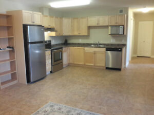 2 Bed 1 Bath Condo at CopperSky - Avail Aug 1st