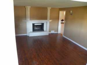 3 Bedroom lower suite with large yard September 1 available