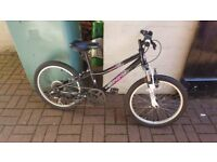 "Kids 6 speed 20"" mountain bike (unisex)"