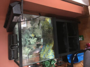 Fish tank with stand and fish supplies