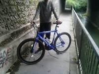 Raceing bike very cheap £90