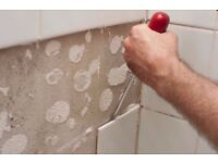 Painting and Decorating, Partitioning, Flooring, Fencing, Refurbishing Services