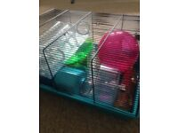 Hamster Home and Toys