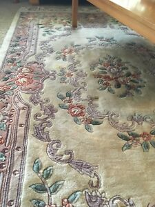 Gorgeous solid area rug NOT CHEAP