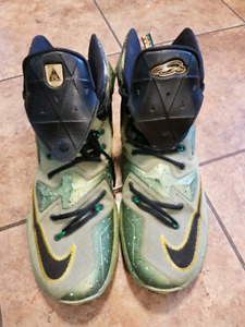 Lebron James Nike size 11 Basketball sneakers