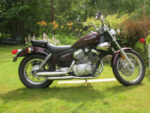 2008 Yamaha V-Star for sale