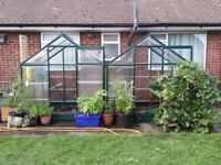 Poly Greenhouse 6x4ft (2 available)