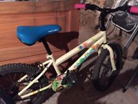Girls Bicycle. (Great condition and rarely used) Now outgrown £40