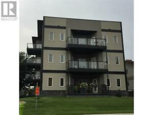 Trendy 2 Bed 2.5 Bath Condo Downtown Red Deer