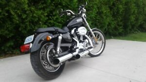 sportster xl low ,