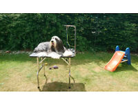 Large heavy duty folding dog grooming table with harness/lead stand £55