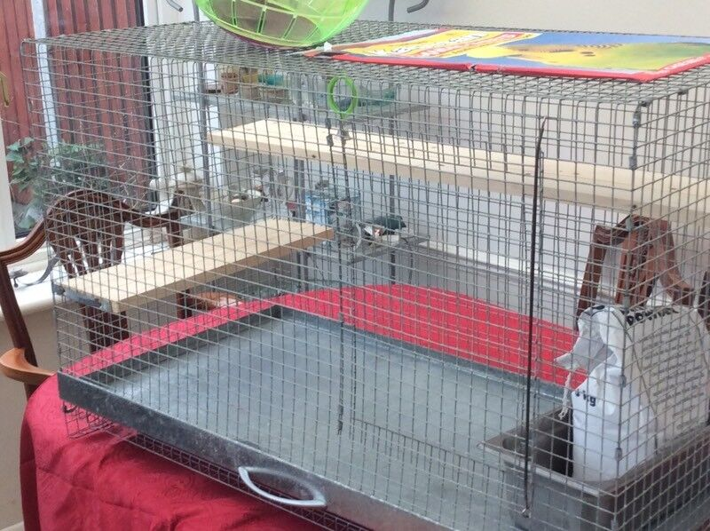 Large Degu/Chinchilla Cage