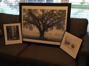Framed Prints Ready for Wall Hanging