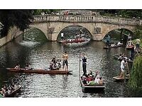 PUNTING IN CAMBRIDGE THIS SATURDAY, ANYONE WANT TO JOIN?