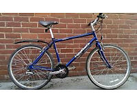Ridgeback 21-Speed Size-17 Hbrid Bike in Perfect Order