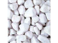 White pebbles/cobbles