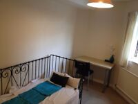 Lovely Large Single Room in a female flat share for a Professional or Student