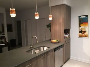 Beautiful 1 bedroom condo for rent in Plateau, Quebec