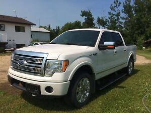 2011 Ford F-150 Platinum For Sale!
