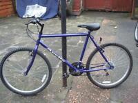 Gents apollo bike