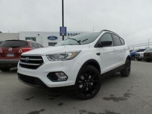 2017 Ford Escape SE 2.0L ECO 201A