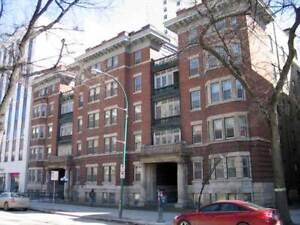 Wonderful Downtown Bachelor Apartment - SEPTEMBER 1ST