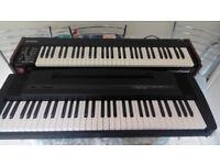 Pianotone J-600 Keyboard Plus Roland EP3 Digital Piano