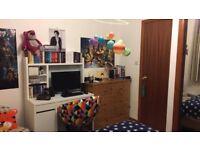 Double room in a top floor student flat