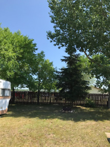CABIN FOR SALE on Terry street in COCHIN SK