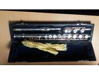 Silver Flute - good starter instrument