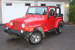 2003 Jeep TJ Rocky Mountain Edition Coupé (2 portes)