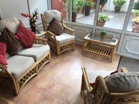 Cane conservatory furniture.